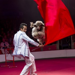 Circus Sarasota To Showcase the Finest International Talent in 2020 Show
