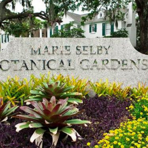 Selby Gardens Receives $600,000 State Appropriation to House Scientific Collections