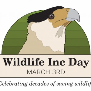 Wildlife Inc. Has Its Own Day and Joins the World in Celebrating World Wildlife Day