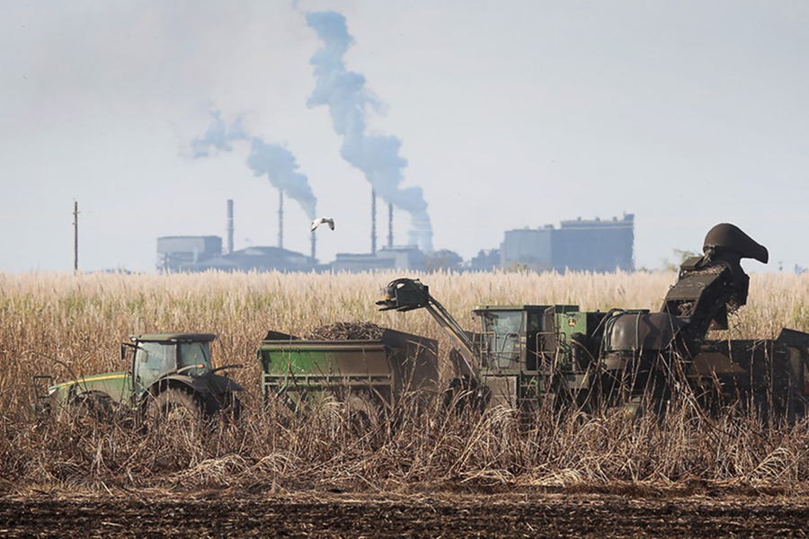 Mechanical harvester collects sugar cane. US Sugar's facility in background. (Photo by Joe Raedle/Getty Images)